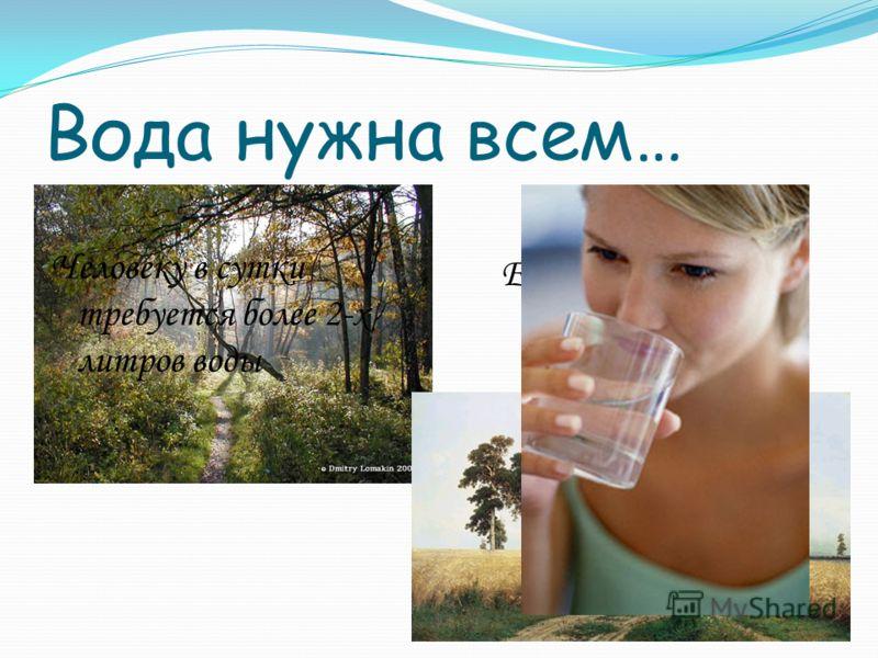 Вода нужна всем… Ее пьют поля и леса Человеку в сутки требуется более 2-х литров воды