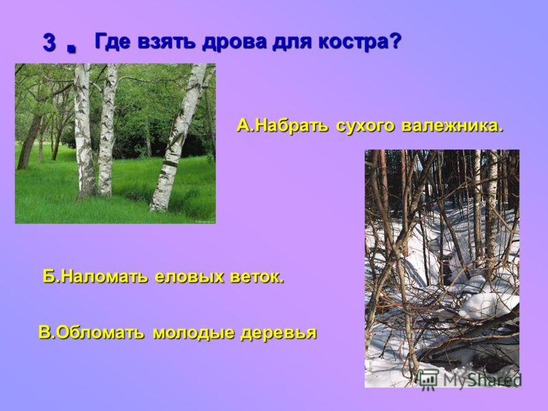 3.Где взять дрова для костра? А.Набрать сухого валежника. Б.Наломать еловых веток. В.Обломать молодые деревья