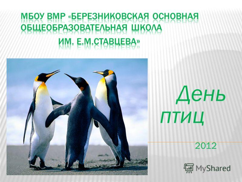 День птиц 2012