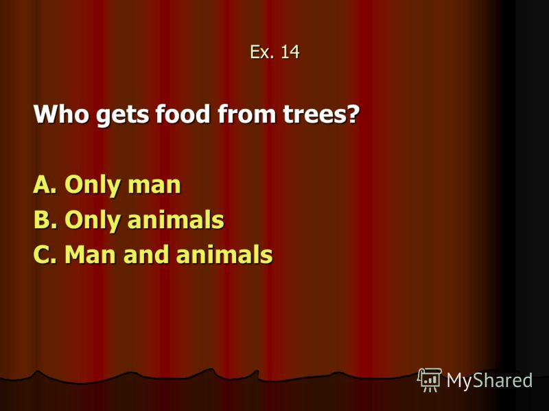 Ex. 14 Who gets food from trees? A. Only man B. Only animals C. Man and animals