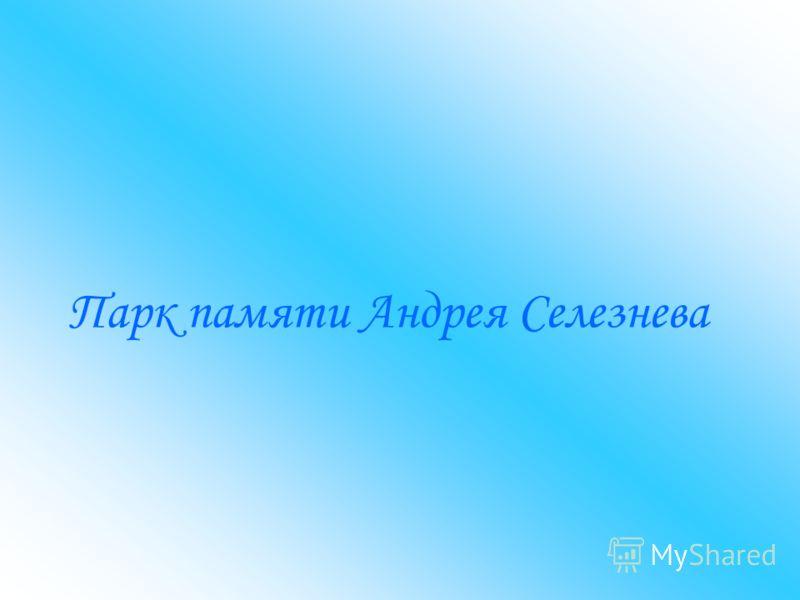 Парк памяти Андрея Селезнева