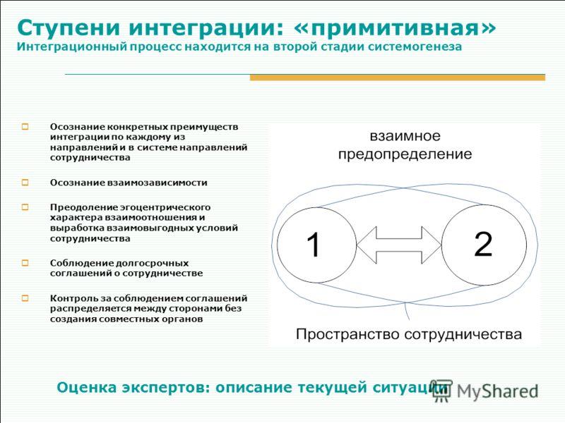Ступени интеграции: «примитивная» Интеграционный процесс находится на второй стадии системогенеза Осознание конкретных преимуществ интеграции по каждому из направлений и в системе направлений сотрудничества Осознание взаимозависимости Преодоление эго
