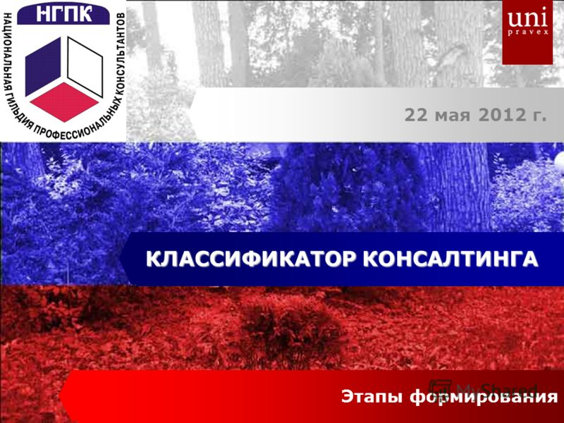 22 мая 2012 г. КЛАССИФИКАТОР КОНСАЛТИНГА Этапы формирования