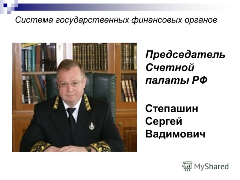 Система государственных финансовых органов Председатель Счетной палаты РФ Степашин Сергей Вадимович