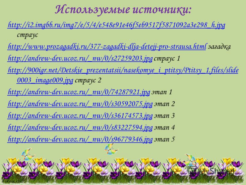 FokinaLida.75 Используемые источники: http://i2.imgbb.ru/img7/e/5/4/e548e91e46f5eb9517f5871092a3e298_h.jpg http://i2.imgbb.ru/img7/e/5/4/e548e91e46f5eb9517f5871092a3e298_h.jpg страус http://www.prozagadki.ru/377-zagadki-dlja-detejj-pro-strausa.htmlht