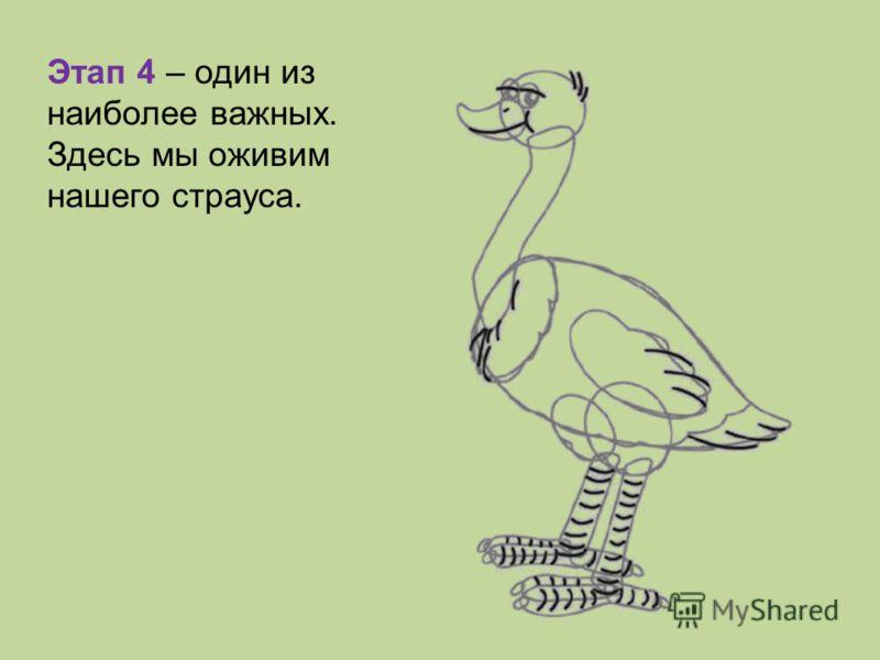 Этап 4 – один из наиболее важных. Здесь мы оживим нашего страуса.