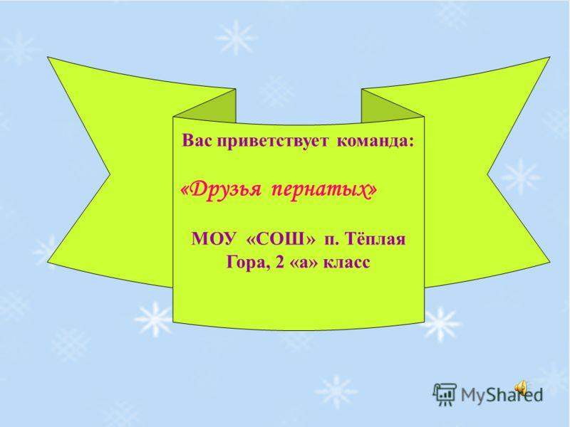 Вас приветствует команда: «Друзья пернатых» МОУ «СОШ» п. Тёплая Гора, 2 «а» класс