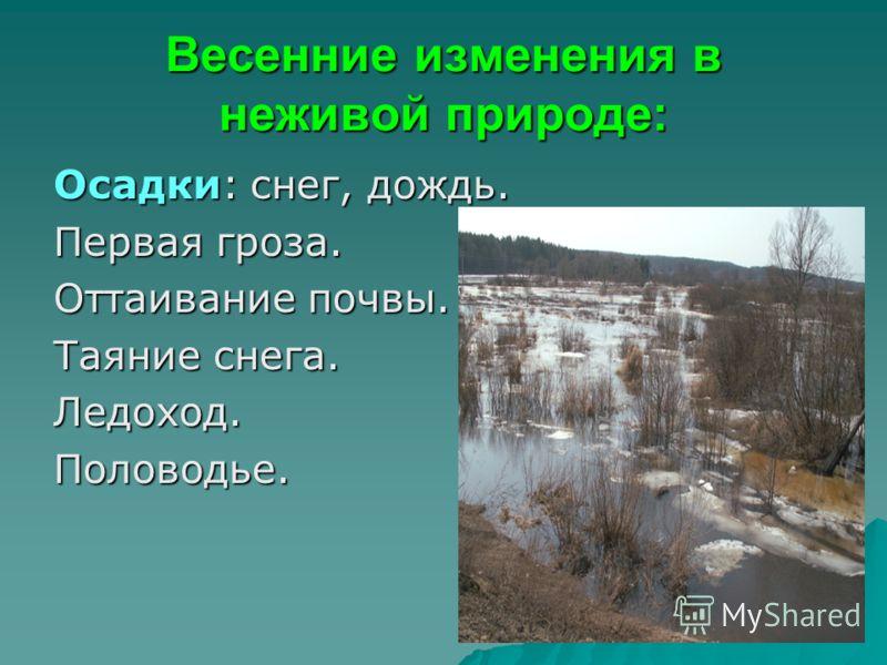 Весенние изменения в неживой природе: Осадки: снег, дождь. Первая гроза. Оттаивание почвы. Таяние снега. Ледоход.Половодье.
