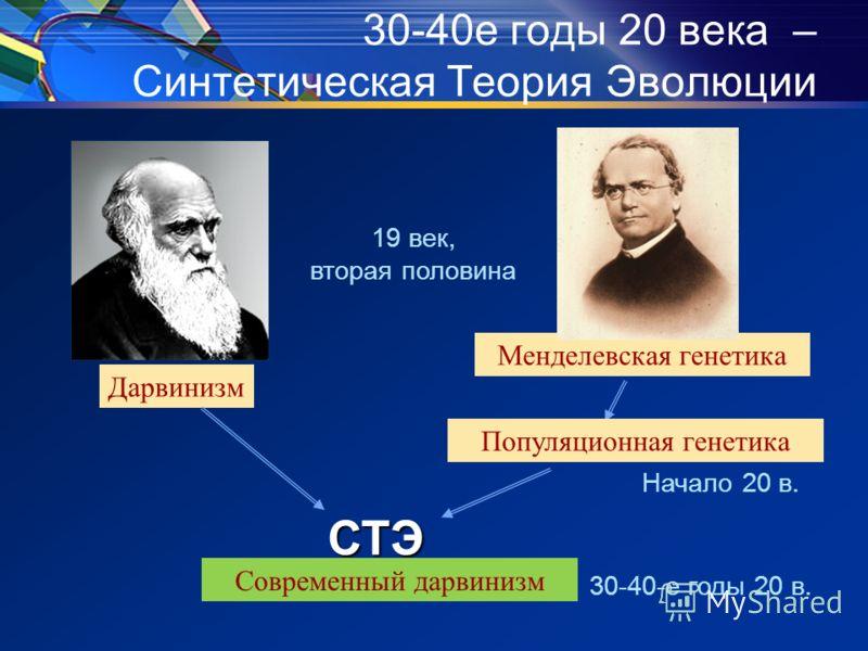 Менделевская генетика Дарвинизм 30-40е годы 20 века – Синтетическая Теория ЭволюцииСТЭ Популяционная генетика Начало 20 в. Современный дарвинизм 19 век, вторая половина 30-40-е годы 20 в.