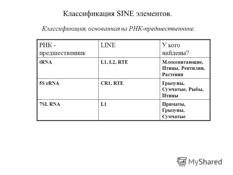 Классификация SINE элементов. Классификация, основанная на РНК-предшественнике. РНК - предшественник LINEУ кого найдены? tRNAL1, L2, RTEМлекопитающие, Птицы, Рептилии, Растения 5S rRNACR1, RTEГрызуны, Сумчатые, Рыбы, Птицы 7SL RNAL1Приматы, Грызуны,