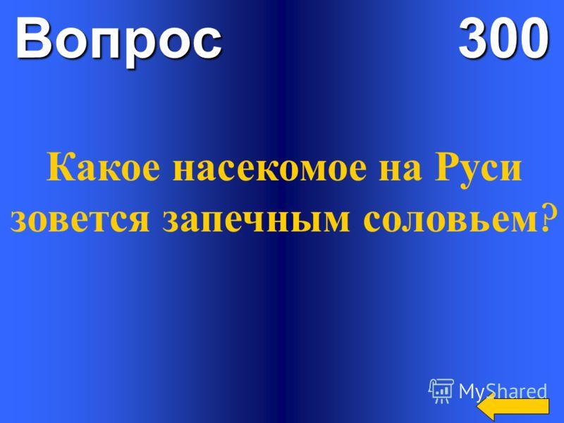 Вопрос 300 Какое насекомое на Руси зовется запечным соловьем ?
