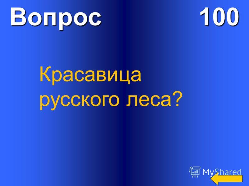 Вопрос 100 Красавица русского леса?