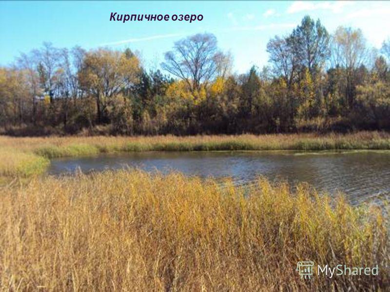 Кирпичное озеро