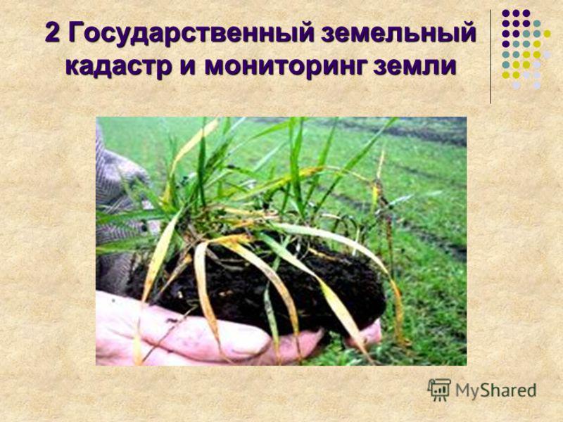 2 Государственный земельный кадастр и мониторинг земли