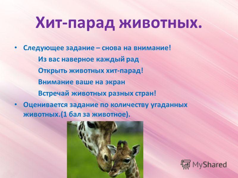 Хит-парад животных. Следующее задание – снова на внимание! Из вас наверное каждый рад Открыть животных хит-парад! Внимание ваше на экран Встречай животных разных стран! Оценивается задание по количеству угаданных животных.(1 бал за животное).
