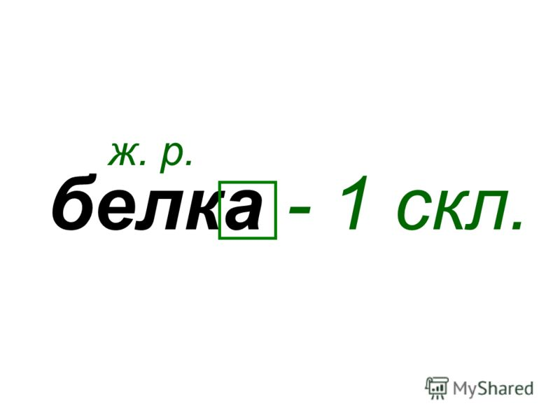 белка ж. р. - 1 скл.