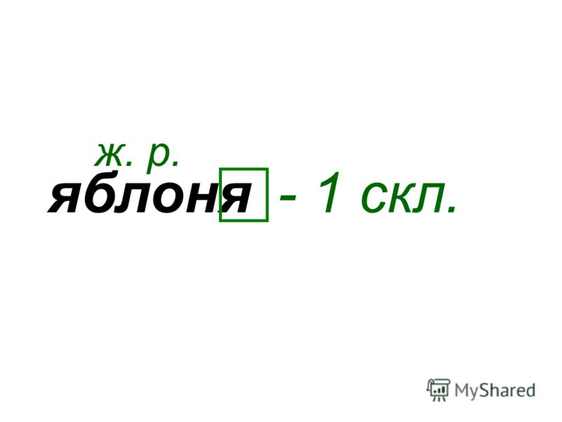 яблоня ж. р. - 1 скл.