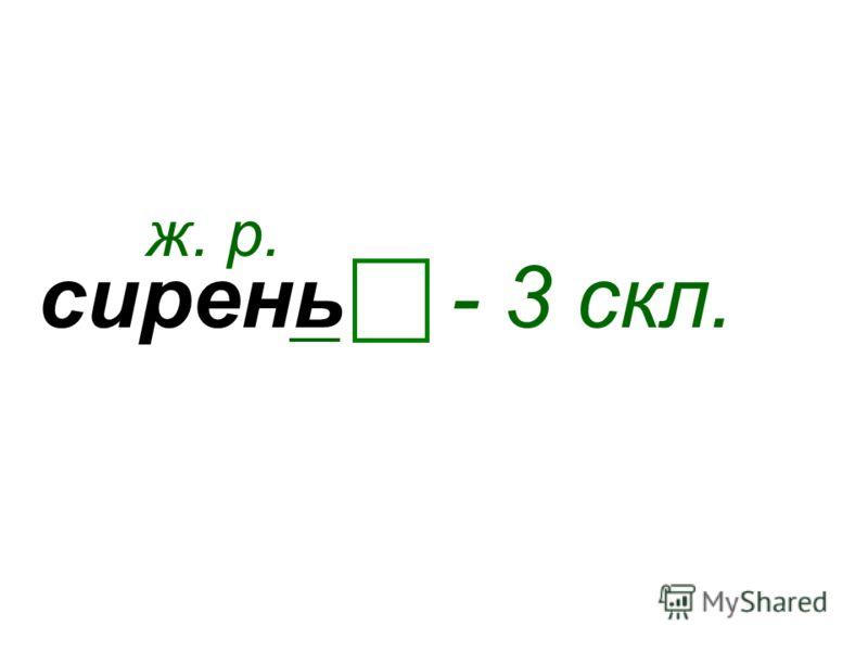 сирень ж. р. - 3 скл.