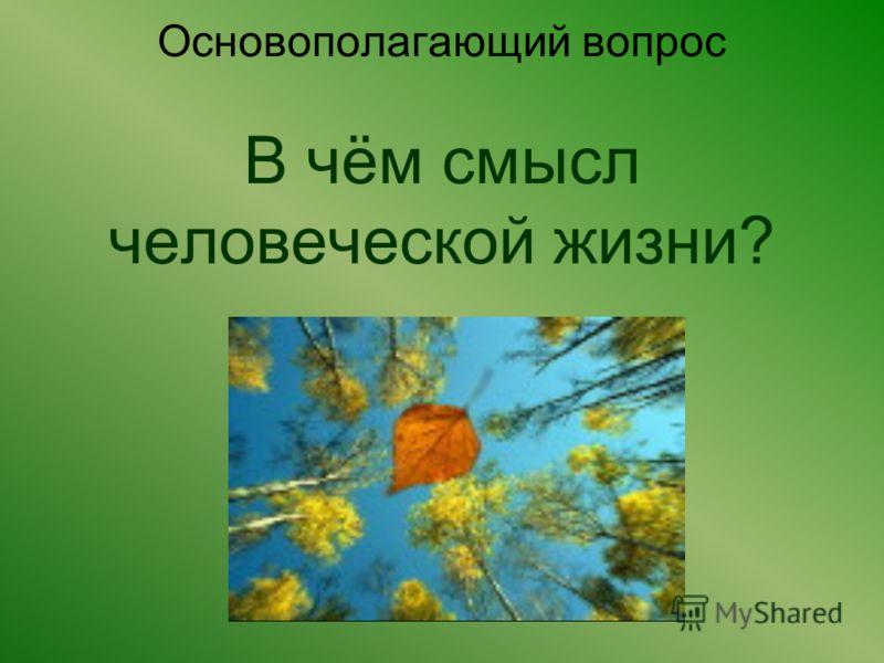 Основополагающий вопрос В чём смысл человеческой жизни?