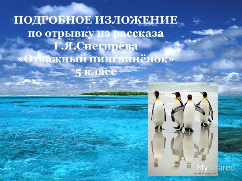 ПОДРОБНОЕ ИЗЛОЖЕНИЕ по отрывку из рассказа Г.Я.Снегирёва «Отважный пингвинёнок» 5 класс