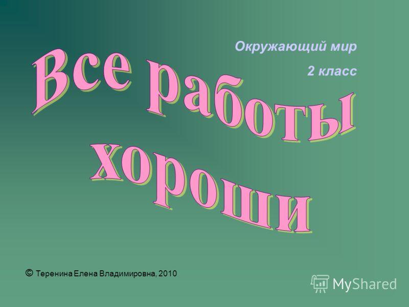 Окружающий мир 2 класс © Теренина Елена Владимировна, 2010