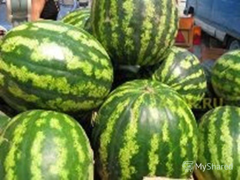 Загадки Винни-Пуха Кафтан на мне зелёный, А сердце как кумач, На вкус как сахар сладкий А сам похож на мяч.