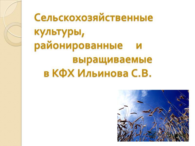 Сельскохозяйственные культуры, районированные и выращиваемые в КФХ Ильинова С. В.