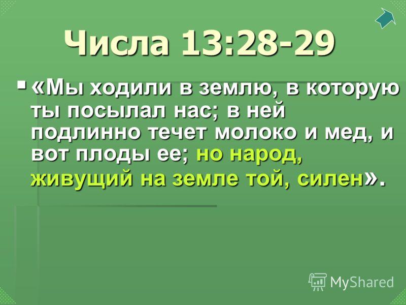 « Мы ходили в землю, в которую ты посылал нас; в ней подлинно течет молоко и мед, и вот плоды ее; но народ, живущий на земле той, силен ». « Мы ходили в землю, в которую ты посылал нас; в ней подлинно течет молоко и мед, и вот плоды ее; но народ, жив