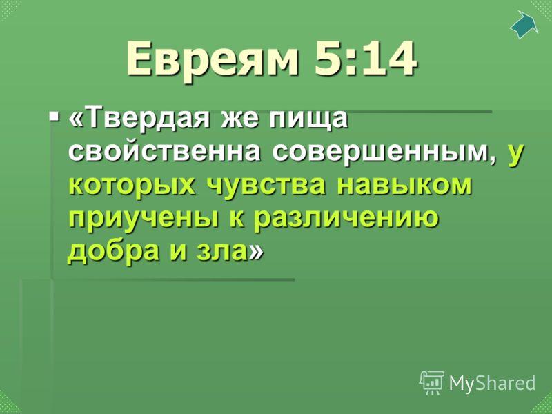 «Твердая же пища свойственна совершенным, у которых чувства навыком приучены к различению добра и зла» «Твердая же пища свойственна совершенным, у которых чувства навыком приучены к различению добра и зла» Евреям 5:14