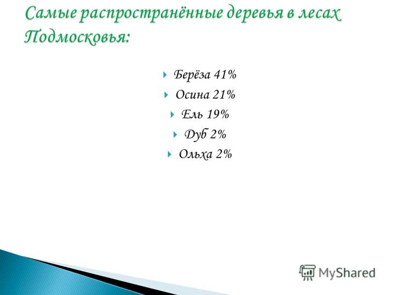 Берёза 41% Осина 21% Ель 19% Дуб 2% Ольха 2%
