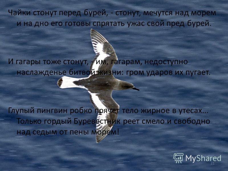 Песня о Буревестнике Над седой равниной моря ветер тучи собирает. Между тучами и морем гордо реет Буревестник, черной молнии подобный. То крылом волны касаясь, то стрелой взмывая к тучам, он кричит, и - тучи слышат радость в смелом крике птицы. В это