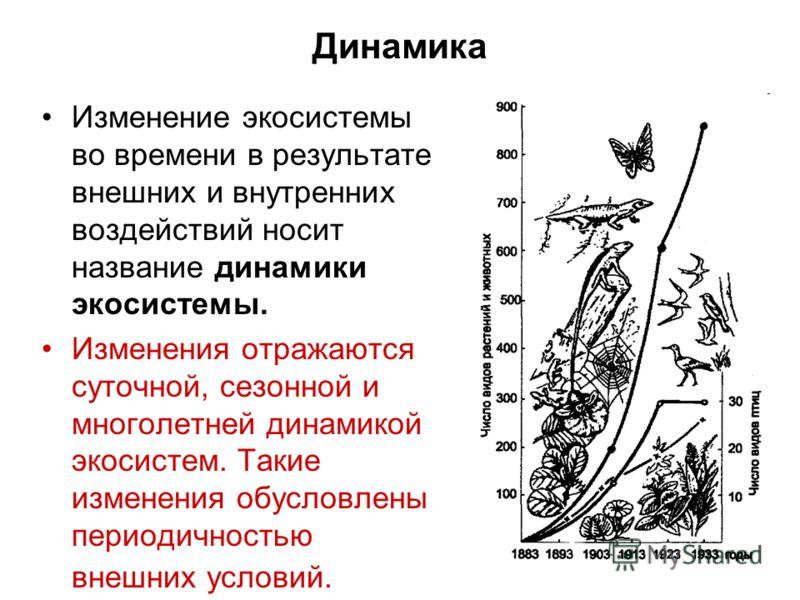 Изменение экосистемы во времени в результате внешних и внутренних воздействий носит название динамики экосистемы. Изменения отражаются суточной, сезонной и многолетней динамикой экосистем. Такие изменения обусловлены периодичностью внешних условий. Д