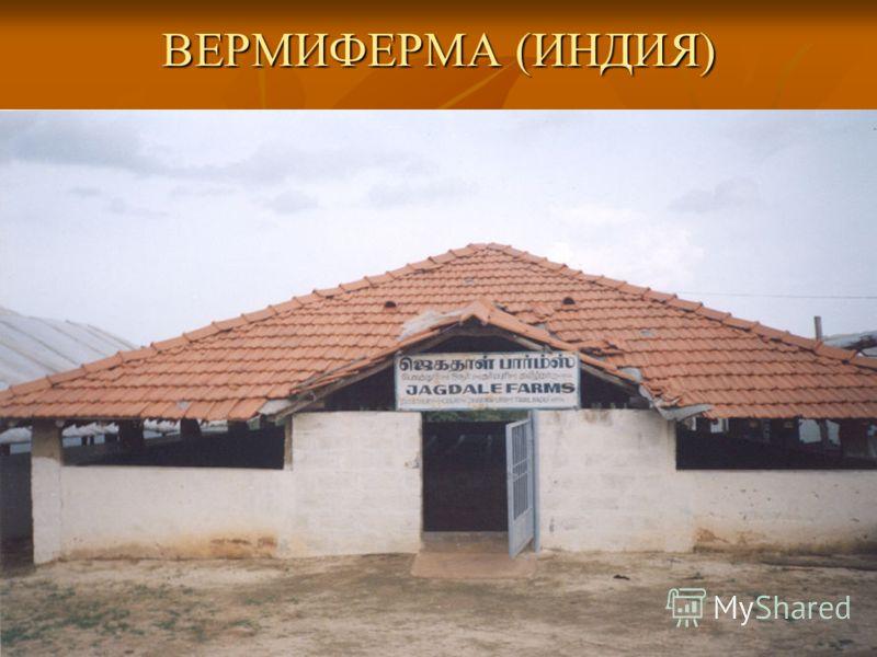ВЕРМИФЕРМА (ИНДИЯ)