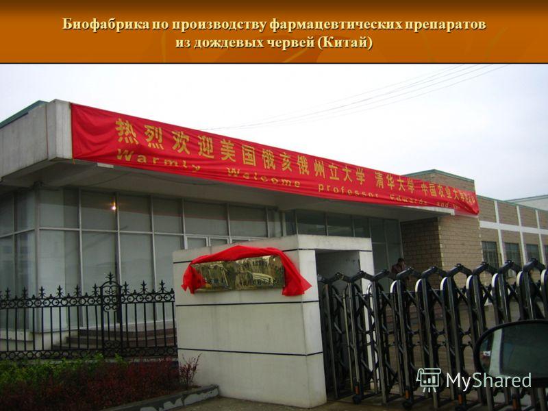 Биофабрика по производству фармацевтических препаратов из дождевых червей (Китай)