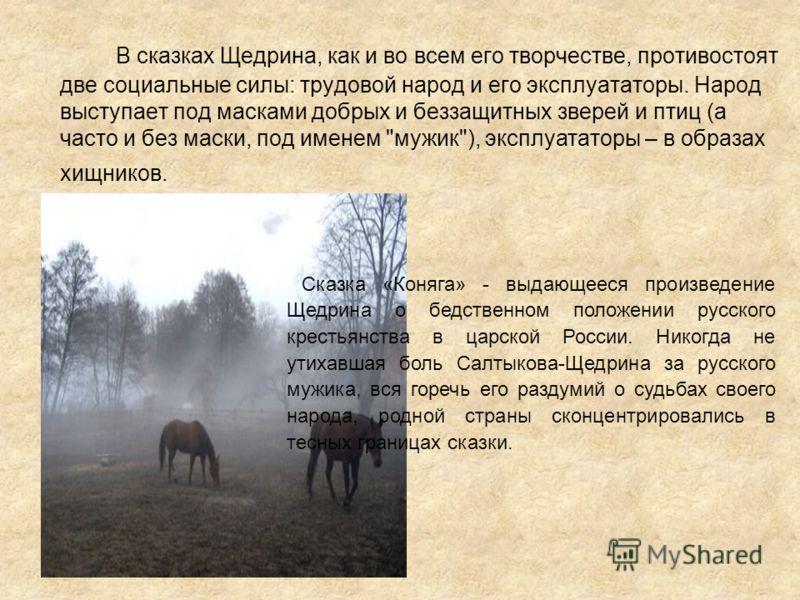 В сказках Щедрина, как и во всем его творчестве, противостоят две социальные силы: трудовой народ и его эксплуататоры. Народ выступает под масками добрых и беззащитных зверей и птиц (а часто и без маски, под именем