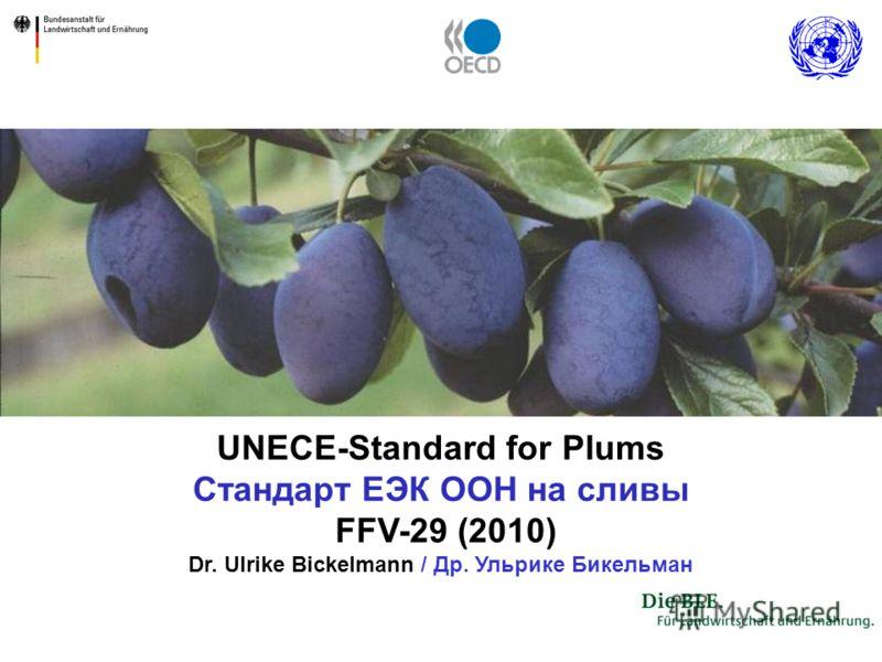 UNECE-Standard for Plums Стандарт ЕЭК ООН на сливы FFV-29 (2010) Dr. Ulrike Bickelmann / Др. Ульрике Бикельман