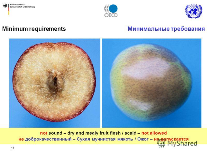 11 Минимальные требованияMinimum requirements not sound – dry and mealy fruit flesh / scald – not allowed не доброкачественный – Сухая мучнистая мякоть / Ожог – не допускается