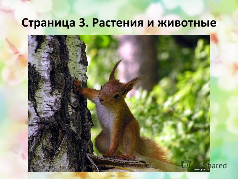 Страница 3. Растения и животные http://www.deti-66.ru/ II Всероссийский конкурс «Моя педагогическая инициатива»