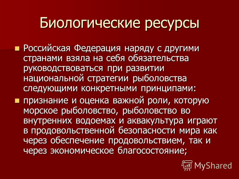 Биологические ресурсы Российская Федерация наряду с другими странами взяла на себя обязательства руководствоваться при развитии национальной стратегии рыболовства следующими конкретными принципами: Российская Федерация наряду с другими странами взяла