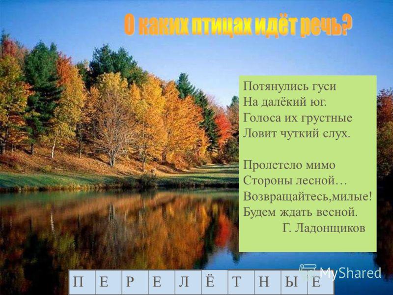 Петух Курица Утка Гусь Индюк Сорока Ворона Воробей Ласточка…