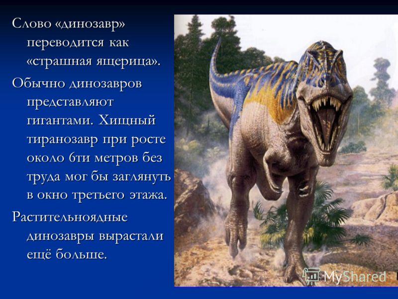 Слово «динозавр» переводится как «страшная ящерица». Обычно динозавров представляют гигантами. Хищный тиранозавр при росте около 6ти метров без труда мог бы заглянуть в окно третьего этажа. Растительноядные динозавры вырастали ещё больше.