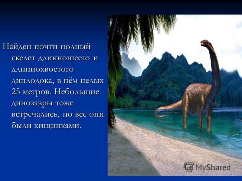 Найден почти полный скелет длинношеего и длиннохвостого диплодока, в нём целых 25 метров. Небольшие динозавры тоже встречались, но все они были хищниками.