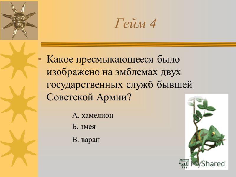 Гейм 4 Какое пресмыкающееся было изображено на эмблемах двух государственных служб бывшей Советской Армии? А. хамелион Б. змея В. варан