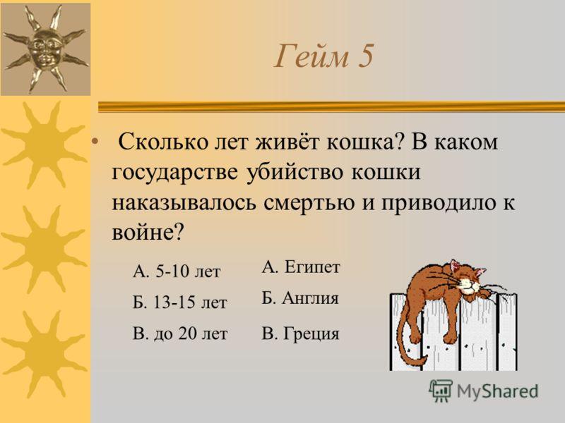 Гейм 5 Сколько лет живёт кошка? В каком государстве убийство кошки наказывалось смертью и приводило к войне? А. 5-10 лет Б. 13-15 лет В. до 20 лет А. Египет Б. Англия В. Греция