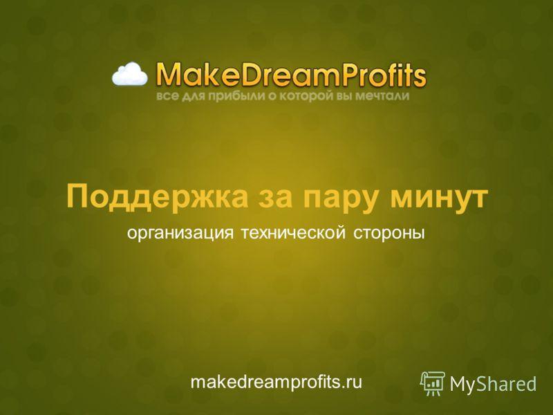 Поддержка за пару минут makedreamprofits.ru организация технической стороны
