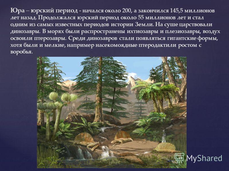 Юра – юрский период - начался около 200, а закончился 145,5 миллионов лет назад. Продолжался юрский период около 55 миллионов лет и стал одним из самых известных периодов истории Земли. На суше царствовали динозавры. В морях были распространены ихтио