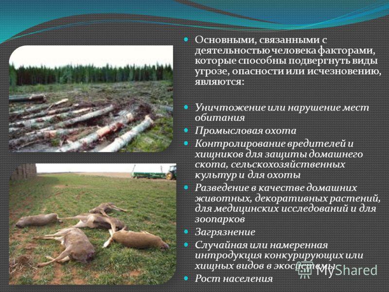 Основными, связанными с деятельностью человека факторами, которые способны подвергнуть виды угрозе, опасности или исчезновению, являются: Уничтожение или нарушение мест обитания Промысловая охота Контролирование вредителей и хищников для защиты домаш