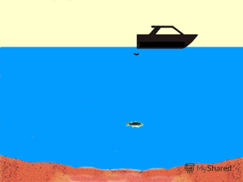 Человек понял природу эха, понял его механику. И вот на основе законов отражения звуковой волны человек создал замечательный прибор эхолот. Этот прибор, установленный на борту корабля, посылает звуковую волну глубину моря. Звук распространяется я в в