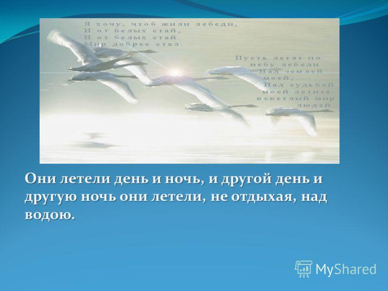 Они летели день и ночь, и другой день и другую ночь они летели, не отдыхая, над водою.