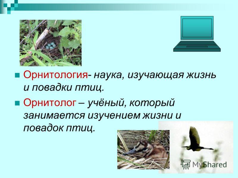 Орнитология- наука, изучающая жизнь и повадки птиц. Орнитолог – учёный, который занимается изучением жизни и повадок птиц.